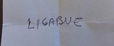 Ecco come hanno votato venerdì sera gli amici di Cossato: Primo posto di misura…